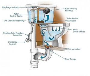 schéma système toilette